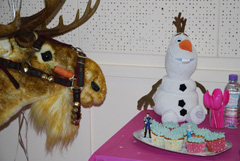 Frozen themed Birthday parties
